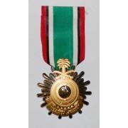 """Medaglia """"Liberazione Kuwait"""""""